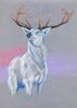 Elite Ice Stag